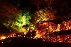 【 次点 】 「滝と紅葉へいざなう竹灯り」