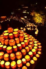 【 入選 】 「広がりゆく竹の灯火」