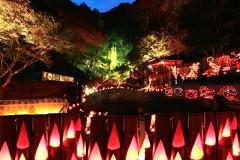 【 入選 】 「竹灯りと滝の競演」