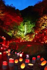 【 入選 】 「小京都小城の清水の滝」